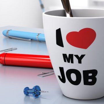 praca job